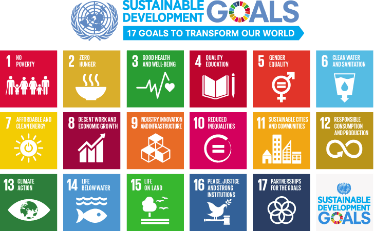 17 colored boxes depicting each sustainable development goals